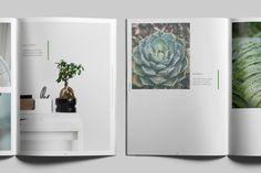 BOTANICA - Portfolio / Photobook / Brochure on Behance