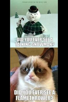 Not a fan of grumpy cat, but this one's funny!
