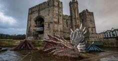 Meet Dwynwen - Caernarfon's new resident Dragon, named after Wales' patron saint of love.