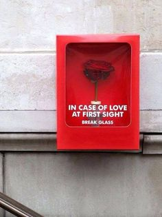 Just in case of love at first sight!