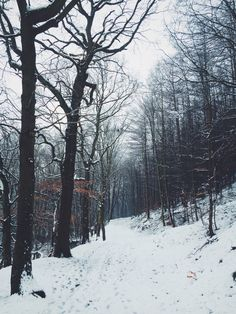 DANIEL CASSON Winter Road, Winter Wonderland, Paths, Fire, Snow, Sheffield, Photography, Outdoor, Outdoors