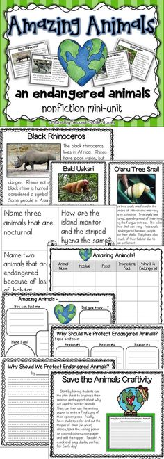 Great for Earth Day!  Nonfiction about endangered animals, main idea and details, graphic organizer and a cute craft!