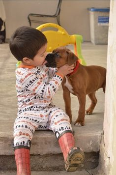 Boxers are the best. They love unconditionally. And are absolutely the greatest with kids and babies.