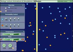 PH BLAST: Biology Lecture Animations and Simulations Tool