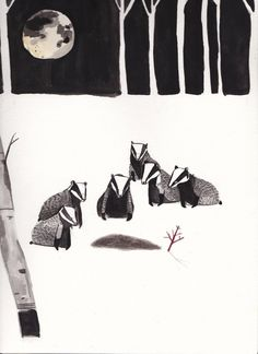 Badger Illustration, Children's Book Illustration, Watercolor Illustration, Collages, Wale, To Infinity And Beyond, You Draw, Storyboard, Graphic