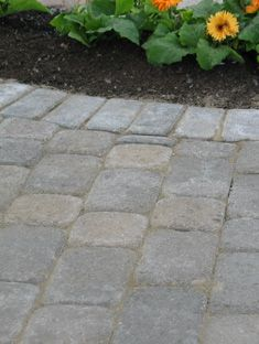 stone pavers - square cobble Dog Backyard, Paving Ideas, Brick Path, Driveway Ideas, Outdoor Stone, Porch Area, Pea Gravel, Outdoor Fireplaces, Outdoor Flooring