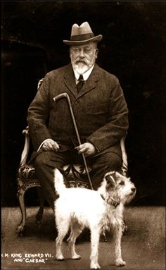"KING EDWARD VII WITH HIS DOG ""CAESAR"" (1910) WHO IS WEARING HIS FABERGE COLLAR AND WHO FOLLOWED THE KING'S COFFIN TO WINDSOR FOR THE ROYAL BURIAL"