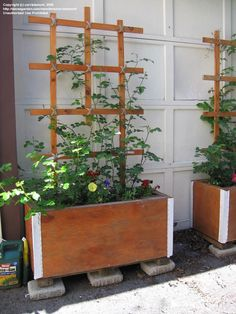 hide ac unit outside - Outdoor Plants, Outdoor Gardens, Outdoor Decor, Courtyard Gardens, Hide Ac Units, Ac Unit Cover, Window Ac Unit, Flower Bed Designs, Window Air Conditioner