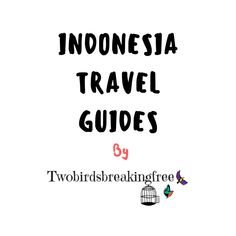 Click through to read our Ultimate Indonesia Travel Guides! Malaysia Travel Guide, Vietnam Travel Guide, India Travel Guide, Thailand Travel Guide, Myanmar Travel, Cambodia Travel, Travel Destinations In India, Plan Your Trip, Travel Guides