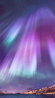 See the aurora borealis (northern lights.)