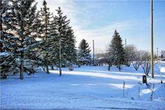 R07//Ile Des Chenes/Here is a very rare opportunity to purchase a 80 x 140 serviced lot in the town of Ile Des Chenes. Build when you want and with whoever you want. Easy walking distance to both schools and an eastern view of nothing but an open field in front of you! The street just got paved so no dust to deal with. Some mature trees on the property so depending on house placement you may be able to keep some around. This location will make it easy to pull out the quad or snowmobile and…