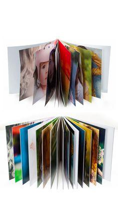 Artisan State Flush Mount Photo Book Flush Mount Album Idea
