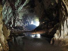 A caverna dos veados (em inglês: Deer Cave) está localizado perto de Miri, Sarawak, Borneo da Malásia e é uma das atrações do Gunung Mulu National Park