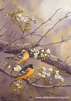 """Catherine McClung - Limited Edition Prints, """"Wild Cherry Orioles"""""""