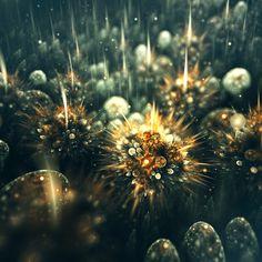 Increibles fractales con una visión fotográfica inspirados en la naturaleza. Por Ciara Biancheri