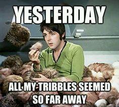 Tribbles