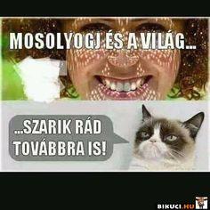 Mosolyogj és a világ sz*rik rád továbbra is! Vicces képek #humor #vicces #vicceskep #vicceskepek #humoros #vicc #humorosvideo #viccesoldal #poen #bikuci Funny Pins, Funny Memes, Jokes, Haha, Funny Pictures, Truths, Smile, Comics, Random