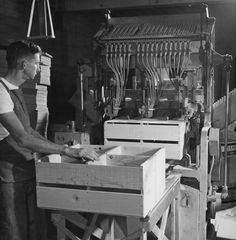 Worker assembling crates with a nailing machine at the Canoga Citrus Association packing house, circa 1935-1945.  Canoga-Owensmouth Historical Society. San fernando Valley History Digital Library.