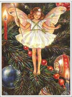 The Christmas Tree Fairy. Vintage flower fairy art by Cicely Mary Barker. Taken from 'Flower Fairies of the Winter'. Click through to the link to see the accompanying poem. Cicely Mary Barker, Christmas Tree Flowers, Christmas Tree Fairy, Merry Christmas, Christmas Cards, Tree Illustration, Fantasy Illustration, Fairy Pictures, Vintage Fairies