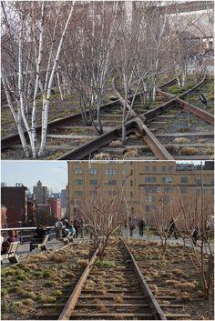 Mais post sobre NY! Vou aproveitar o feriado prolongado e postar mais algumas coisinhas de lá! Bom, a dica de hoje é o High Line Park. Trata-se de um parque fundado em 1999 numa linha de trem que estava abandonada e prestes a ser demolida. Essa linha é no alto, a uns 10 metros do …