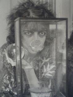 Man Ray | la Rocaille