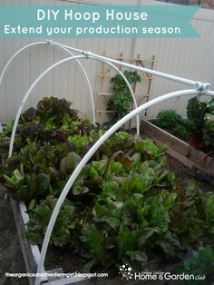 DIY Hoop House: Extend Your Garden Season: Jordan Valley Home & Garden Club