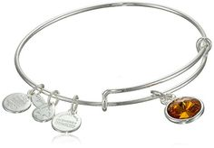 Alex and Ani Bangle Bar November Birth Month ShinySilver Tone Expandable Bracelet *** Be sure to check out this awesome product.(This is an Amazon affiliate link and I receive a commission for the sales)
