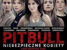 Download Pitbull Niebezpieczne Kobiety | Pobierz Pitbull Niebezpieczne Kobiety | Download Pitbull Niebezpieczne Kobiety