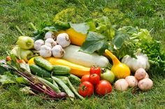 Tips for growing a kitchen garden.