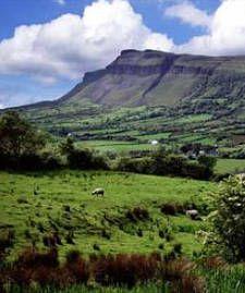 O'Reilly Homelands