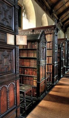 ♠️Gothic Book Library♠️