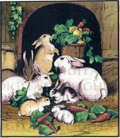 Bunches Of Bunnies.  VINTAGE Rabbit by DandDDigitalDelights