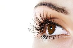 """Eyebrow and eyelashes are both essential part of facial beauty. Thick eyebrows and fuller eye-lashes are very much """"in"""" this season. Although there are many mascara and other products that claim to gi How To Grow Eyelashes, Thicker Eyelashes, Natural Eyelashes, Longer Eyelashes, Long Lashes, Thick Eyebrows, Fake Lashes, Prévenir Les Rides, Beauty Network"""