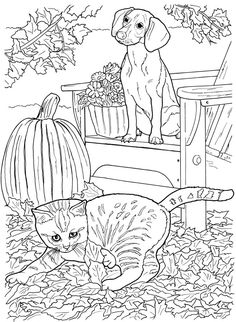 Cat and Dog Coloring Page. Cat and Dog Coloring Page. Dog and Cat Coloring Pages Fall Coloring Pages, Dog Coloring Page, Animal Coloring Pages, Coloring Pages To Print, Coloring Books, Free Printable Coloring Sheets, Free Adult Coloring Pages, Free Coloring, Drawing