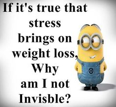 Weight loss jokes: if it's true that stress brings on weight loss, why Stress Humor, Stress Quotes, Funny Diet Quotes, Diet Motivation Quotes, Funny Sayings, Humor Quotes, Minions Fans, Minions Quotes, Purple Minions