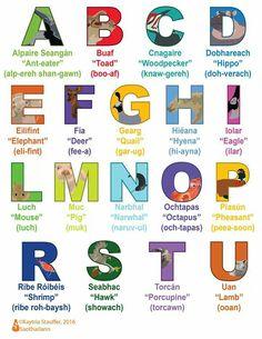 Irish Gaelic Language, Gaelic Words, Irish Quotes, Irish Sayings, Primary Teaching, Luck Of The Irish, Doodles, Education, Ireland
