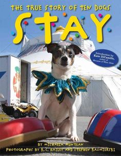 """Stay: The True Story of Ten Dogs"" by Michaela Muntean"