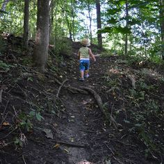 #hiking #walking #strolling #bighill #exercise #outdoors #outdoor #baby #preschooler #toddler #forest #brantford #ontario #canada #mountpleasant #brantcounty