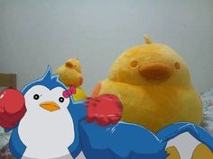 ピンドラペンギンとTOICAひよこのコラボ3(・Θ・∞) 3ちゃん vs ひよこ
