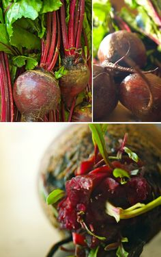 The Vegetarian Flavor Bible Giveaway & Garlic-Tarragon Beet Soup Recipe – weekend recipes
