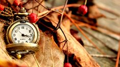 Beautiful Vintage Watch HD 1080p Wallpapers Download