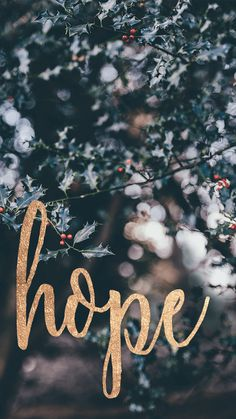 Here are some of our FREE advent wallpapers! Check it out! Phone Background Patterns, Christmas Wallpaper, Christmas Phone Backgrounds, After Life, Diy Phone Case, Phone Cases, Dog Treat Recipes, Dinners For Kids, Christmas Quotes
