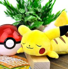 Sleeping Pikachu Plush Pencil Pouch at CoolPencilCase.com