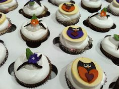 Owl chocolate Carmel cupcakes