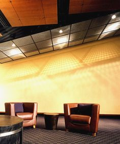 This wire mesh ceiling application uses Banker Wire's architectural twin wire pattern M22-27 to create texture. The large wire mesh sheets are hung from above, allowing them the flex in a natural shape. The well positioned lights above the panels create shadows on the wall, effectively dressing up a large, plain wall.  Product(s) Used:  L-81