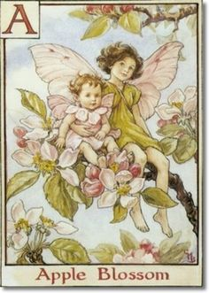Apple Blossom Fairies by Cecily Mary Barker  inkspired musings: Apple Blossom Promises