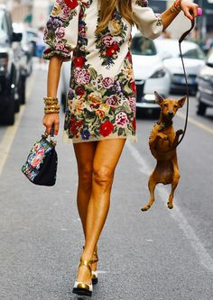 Anna Dello Russo and her dog during Milan Fashion Week, Spring 2013 Anna Dello Russo, Street Style Chic, Looks Street Style, Looks Style, Mode Chic, Mode Style, Fashion News, High Fashion, Womens Fashion