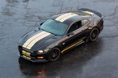 2016 Ford Shelby Mustang GT-R Ford Mustang Shelby Gt, Neuer Ford Mustang, Mustang Cars, Ford Gt, Upcoming Cars, Carroll Shelby, Pony Car, Car Ford, Performance Cars