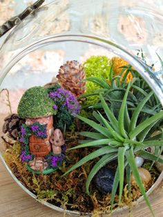 Hobbit or Fairy House and Air Plant Moss Terrarium with Charm - A Unique Birthday Gift Idea