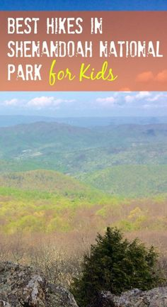 Shenandoah National Park has some of the best hikes in Virginia for kids. Here are my favorite Shenandoah hikes with kids.